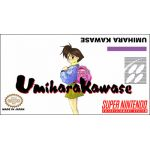Umihara Kawase Super Nintendo SNES English